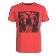 T-SHIRT QUIKSILVER ORGANIC TEE JAVA TIGER ROUGE